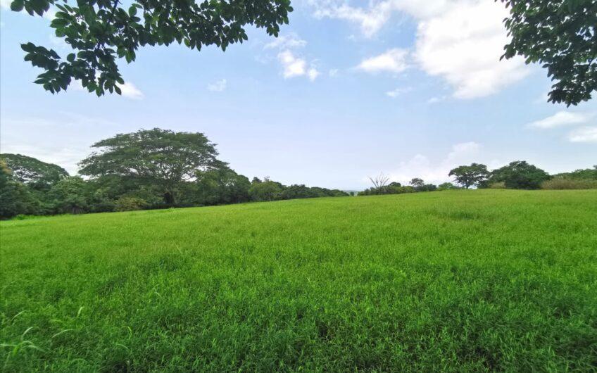 Finca en Venta, Orotina, Alajuela. Cod.FV5116